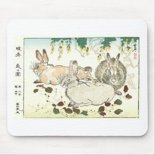 Bollos hermosos tapete de ratones