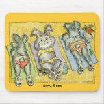 Bollos lindos (en la playa) Mousepad Tapetes De Ratones