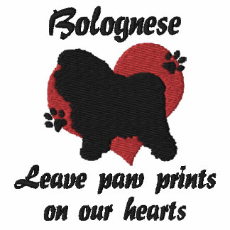 Bolognese Leave Paw Prints