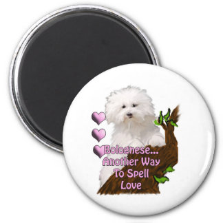 Bolognese or Havanese puppy 2 Inch Round Magnet