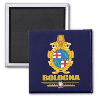 Bolonia Imán Cuadrado