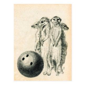 Bolos de Meerkat Tarjeta Postal