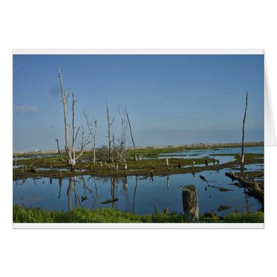 Bolsa Chica Ecological Area Card