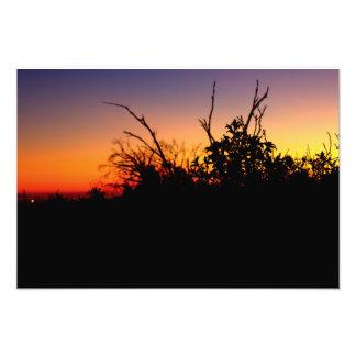 Bolsa Chica Wetlands Sunset Photo Print