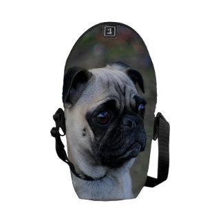 Bolsa de mensajero del carrito del perro del barro bolsa de mensajería