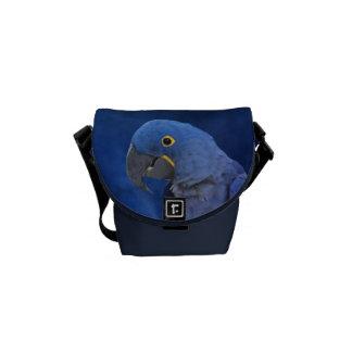 Bolsa de mensajero del Macaw del jacinto la mini Bolsas De Mensajeria