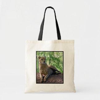 bolso bonito del gatito bolsa lienzo