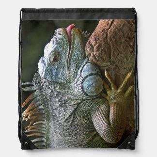 Bolso de la iguana mochilas