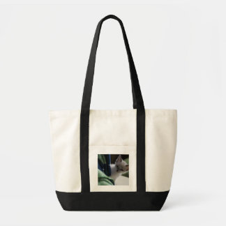 Bolso del gatito del peekaboo bolsa tela impulso