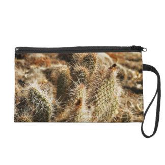 Bolso del mitón de la foto del cactus del desierto