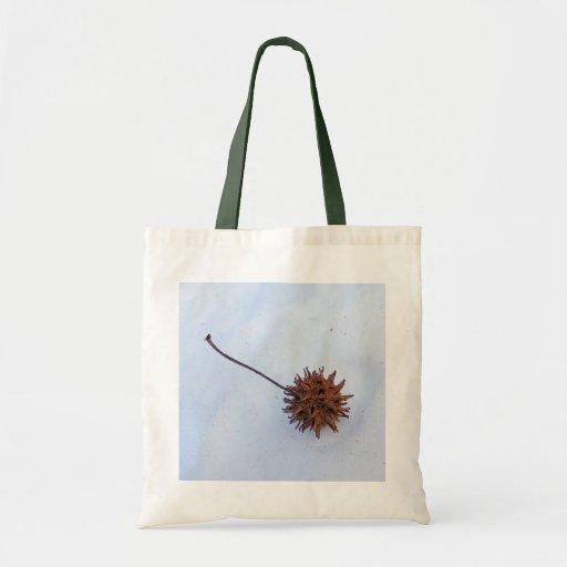 Bolso espinoso del ~ de la semilla bolsa tela barata