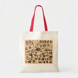 Bolso fósil de la playa bolsas de mano