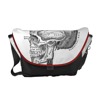 Bolso médico del cráneo - bolso de la anatomía bolsas de mensajería