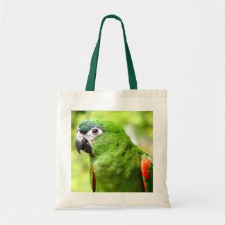 Bolso verde 2 del loro bolsas de mano