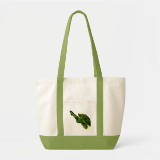 Bolso verde del buceador bolsas