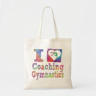 Bolsos del coche de la gimnasia bolsas