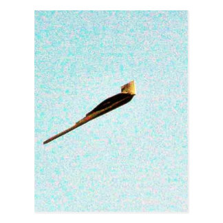 Bombardero de la cautela de F117a Tarjeta Postal