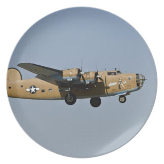 Bombardero de Lil B-24 del diamante, aterrizando e Plato De Comida