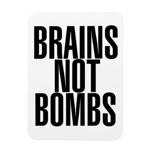 Bombas de los cerebros no imanes flexibles