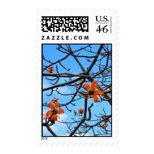 Bombax Ceiba Postage Stamps