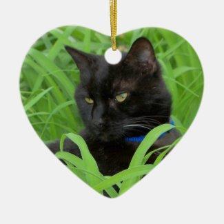 Bombay Black Cat Birthday Ornament