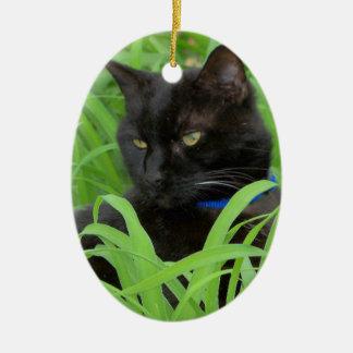 Bombay Black Cat Gift Greeting Ornament Christmas Ornament