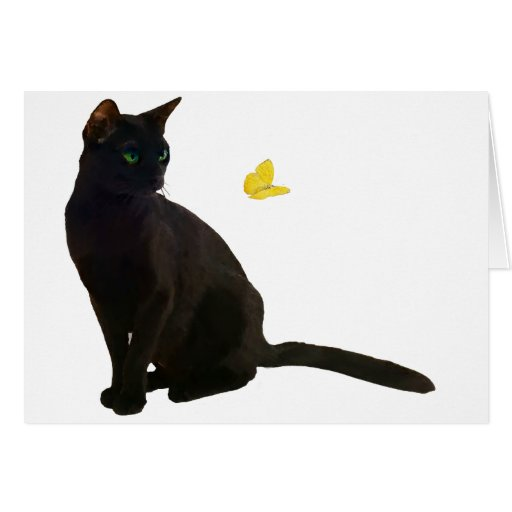 Bombay Cat & Butterfly Greeting Card