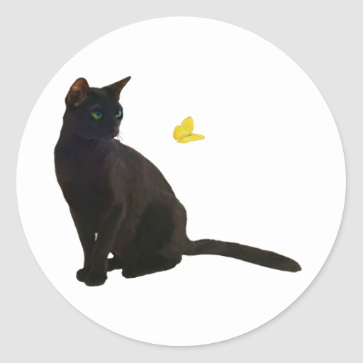 Bombay Cat & Butterfly Stickers