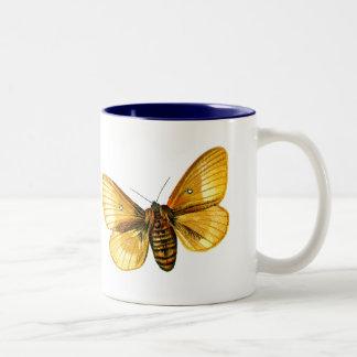 Bombyx quercus female Two-Tone coffee mug