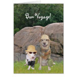 Bon Voyage Safari Cards