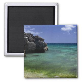 Bonaire Ocean Magnet