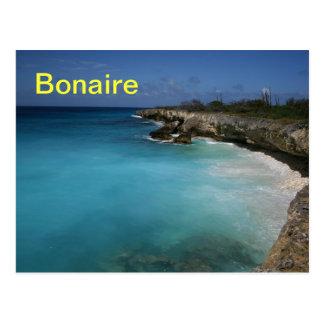 Bonaire postcard