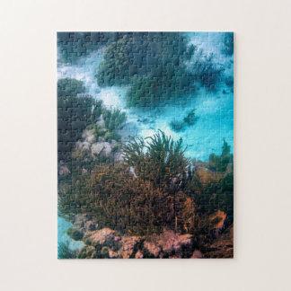 Bonairean Reef Jigsaw Puzzle