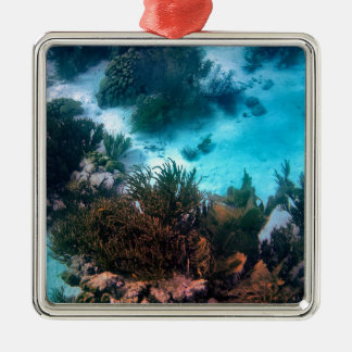 Bonairean Reef Metal Ornament