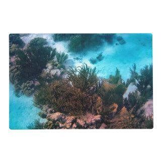 Bonairean Reef Laminated Place Mat