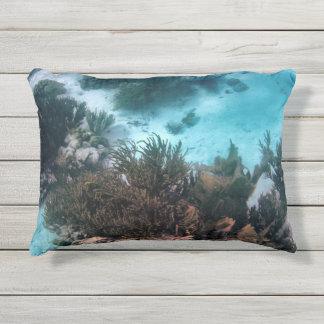 Bonairean Reef Outdoor Pillow
