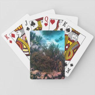 Bonairean Reef Playing Cards
