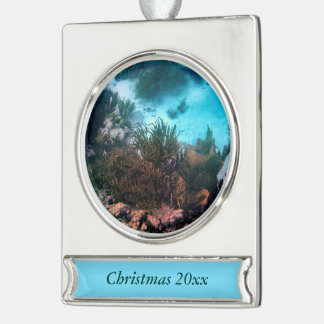 Bonairean Reef Silver Plated Banner Ornament