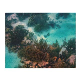 Bonairean Reef Wood Wall Art