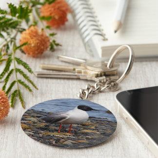 Bonaparte's Gull at the Beach Keychain