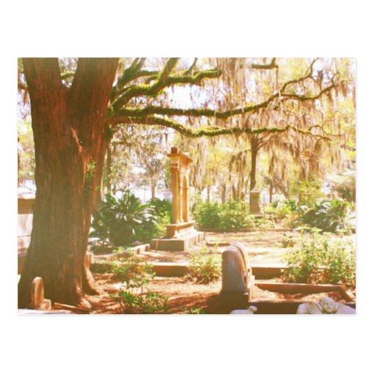 Bonaventure Cemetery Postcard