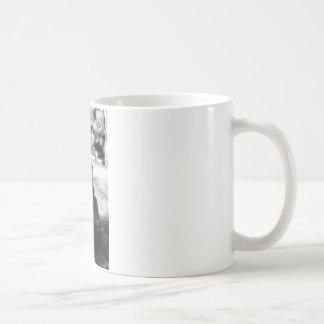 Bonaventure Cemetery Savannah, GA Classic White Coffee Mug