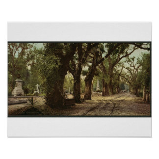 Bonaventure Cemetery, Savannah, Georgia circa 1901 Poster
