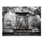 Bonaventure Cemetery Savannah Postcard