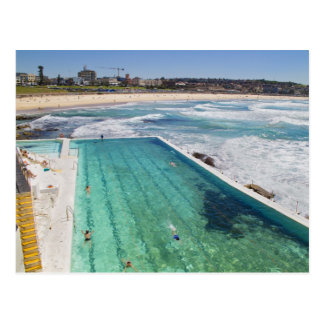 Bondi Icebergs at Bondi Beach Postcard