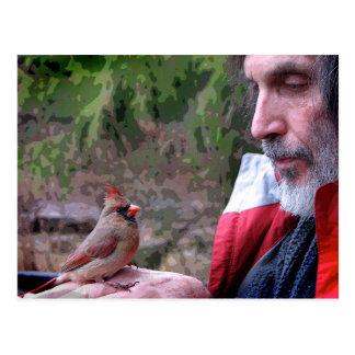 Bonding with Mrs. Cardinal Postcard