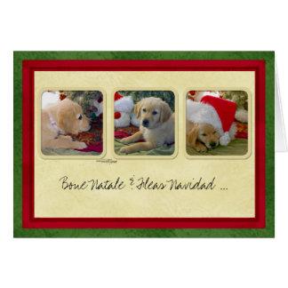 Bone Natale Fleas Navidad Greeting Card