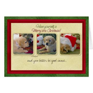 Bone Natale Fleas Navidad Greeting Cards