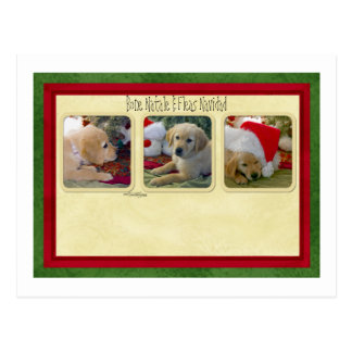 Bone Natale Fleas Navidad Post Card