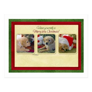 Bone Natale Fleas Navidad Post Cards